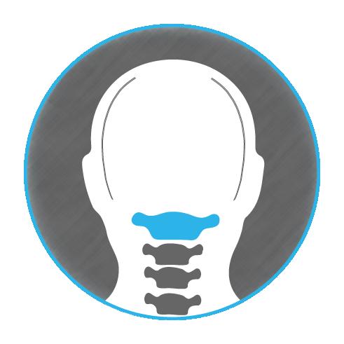 Elite Upper Cervical Logo Head Only