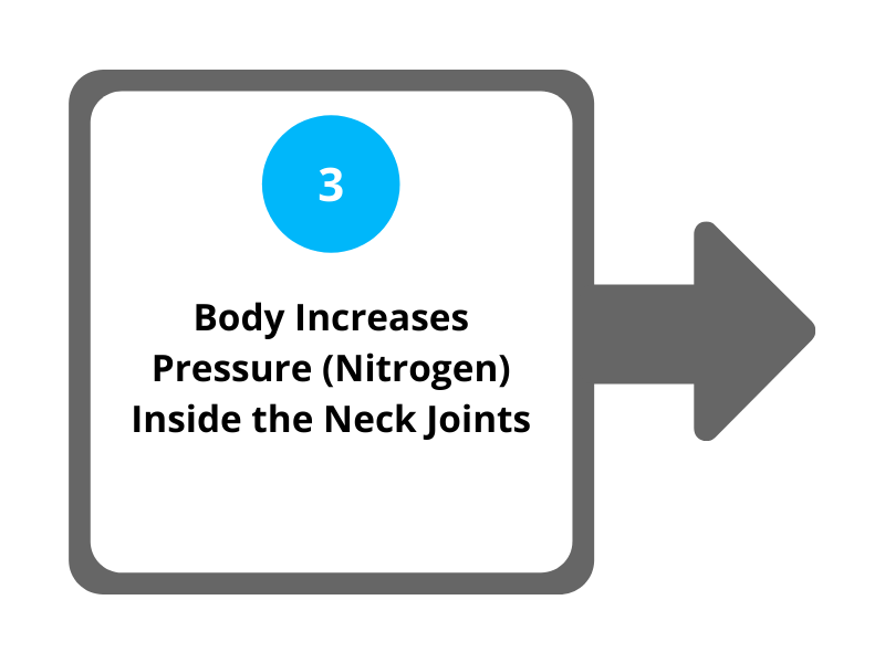 Step 3 Body Increases Pressure (Nitrogen) Inside the Neck Joints